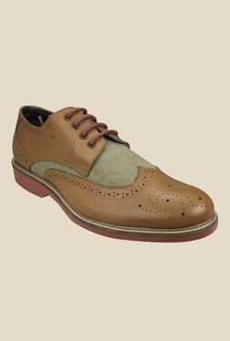 Arrow Tan Brogue Shoes