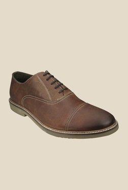 US Polo Assn. Brown Oxford Shoes