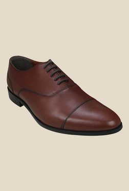 Arrow Brown Oxford Shoes