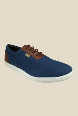 US Polo Assn. Blue & Brown Sneakers