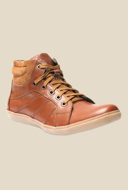 Molessi Brown & Tan Sneakers