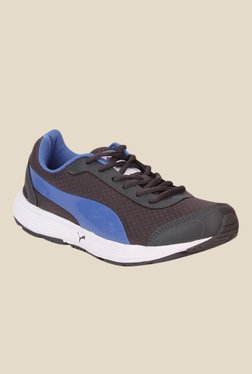 Puma Reef DP Brown & Blue Running Shoes