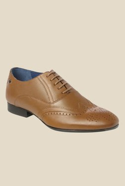 Toni Rossi Irvin Tan Brogue Shoes