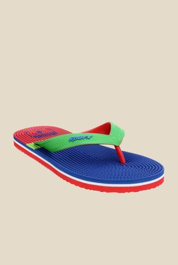 Sparx Green & Royal Blue Flip Flops