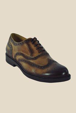 Salt 'n' Pepper Antartic Choco Brown Brogue Shoes