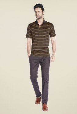 ColorPlus Brown Striped Polo T Shirt