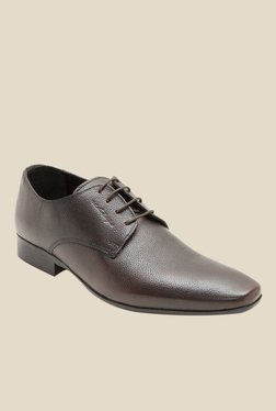 Red Tape Cocoa Brown Derby Shoes