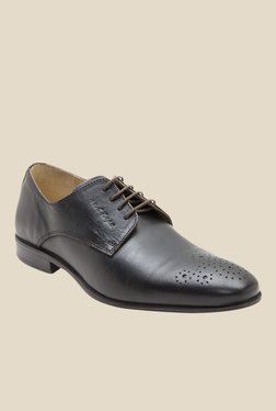 Red Tape Dark Brown Derby Shoes