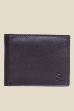 Kara Dark Brown Solid Bi-Fold Leather Wallet - Mp000000001113304