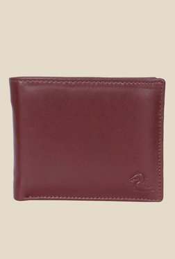 Kara Brown Solid Bi-Fold Leather Wallet - Mp000000001113308