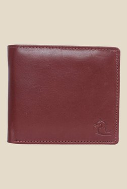 Kara Brown Solid Bi-Fold Leather Wallet - Mp000000001113310