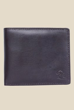 Kara Dark Brown Solid Bi-Fold Leather Wallet