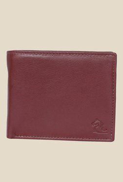 Kara Brown Solid Bi-Fold Leather Wallet - Mp000000001113323