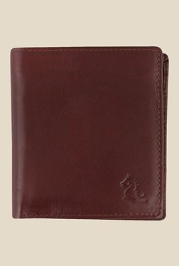 Kara Brown Solid Bi-Fold Leather Wallet - Mp000000001113344