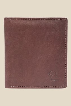Kara Brown Solid Bi-Fold Leather Wallet - Mp000000001113398