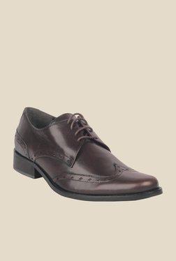 Salt 'n' Pepper Zindabad Dark Brown Derby Shoes