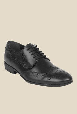 Salt 'n' Pepper Zoop Black Brogue Shoes