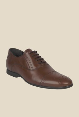 Salt 'n' Pepper Smoke Brown Oxford Shoes