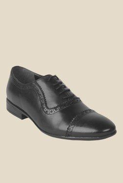 Salt 'n' Pepper Zoop Black Oxford Shoes
