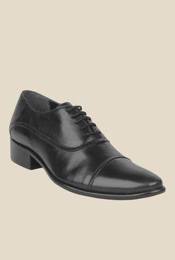 Salt 'n' Pepper Senator Black Oxford Shoes