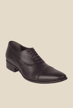 Salt 'n' Pepper Senator Dark Brown Oxford Shoes