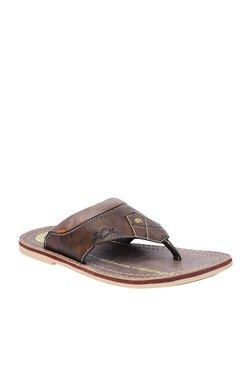 BCK By Buckaroo Garett Dark Brown Thong Sandals