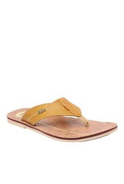 BCK By Buckaroo Castro Tan Thong Sandals