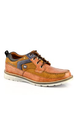 ID Tan & Navy Derby Shoes