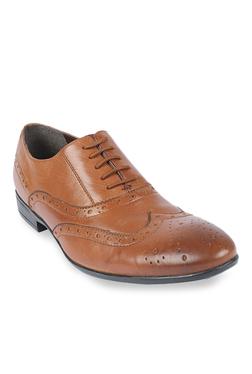 Salt 'n' Pepper Koop Almond Brogue Shoes