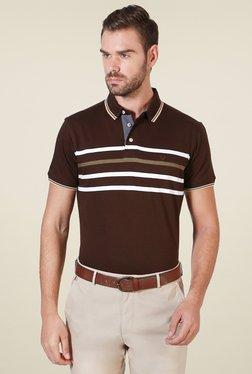 Allen Solly Dark Brown Striped Polo T-Shirt