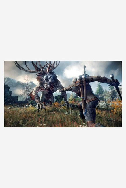 CD Projekt The Witcher 3: Wild Hunt (PS4)