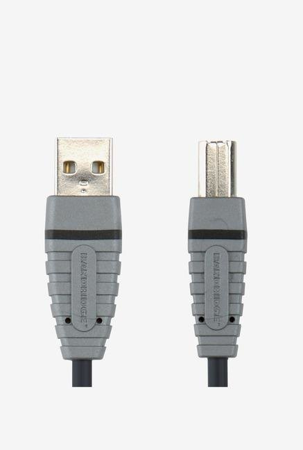 Bandridge BCL4105 USB Cable Blue