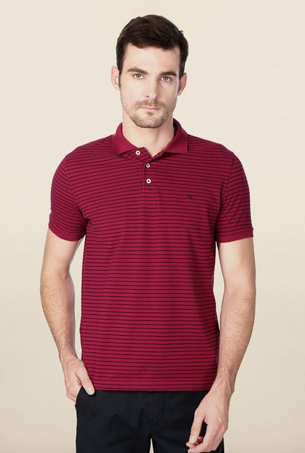 Peter England Dark Pink Striped Polo T-Shirt
