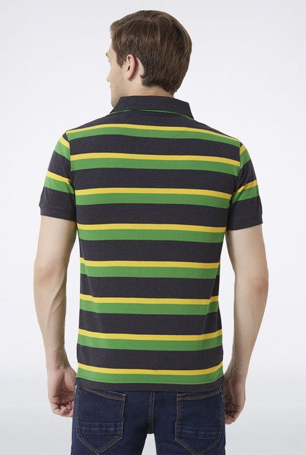 Peter England Multicolored Striped Polo T-Shirt