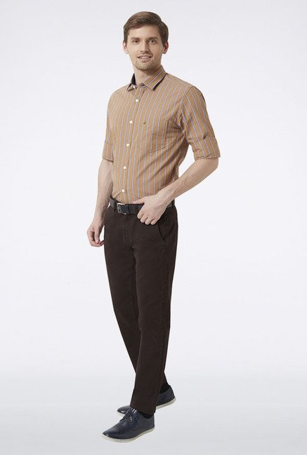 Peter England Brown Striped Slim fit Casual Shirt