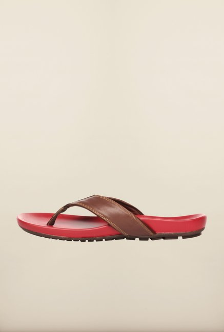 Pavers England Brown & Red Slippers