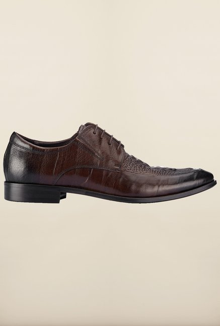 Tresmode Bcroc Brown Derby Shoes