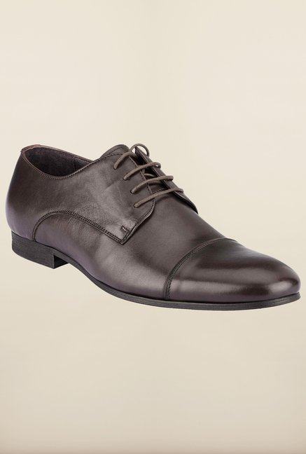 Tresmode Hungo Brown Derby Shoes