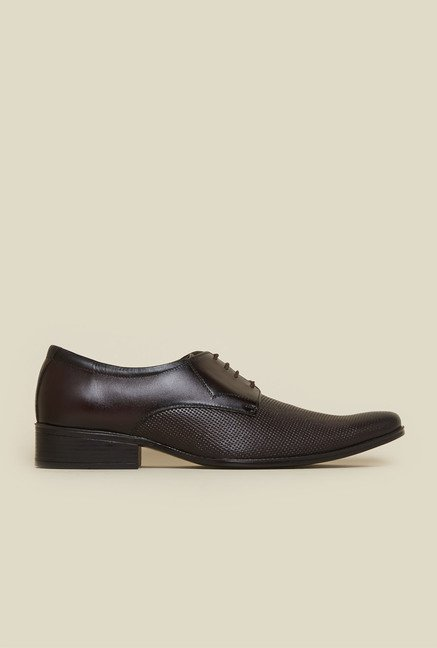Privo by Inc.5 Dark Brown Leather Derby Shoes