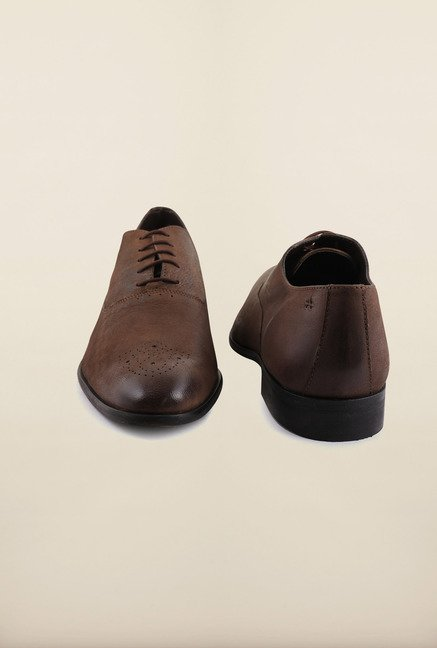 Arrow Brown Leather Brogue Formal Shoes