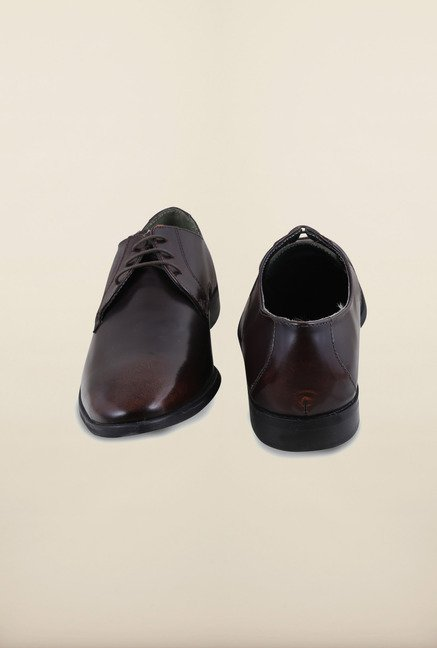 Arrow Dark Brown Leather Derby Formal Shoes
