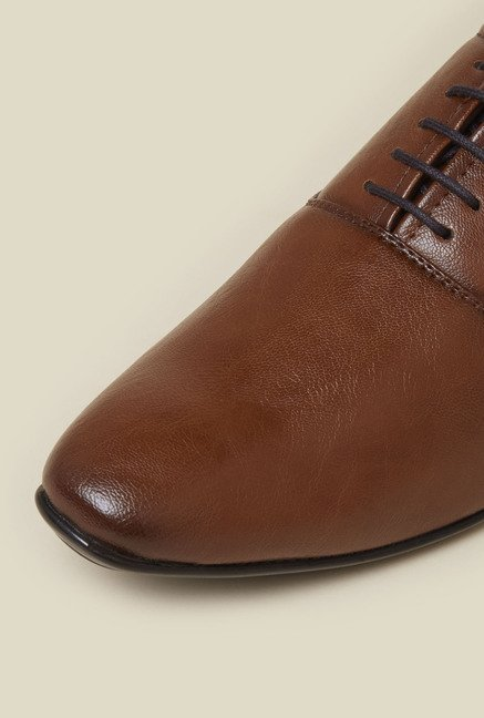 Zudio Brown Oxford Lace Up Shoes