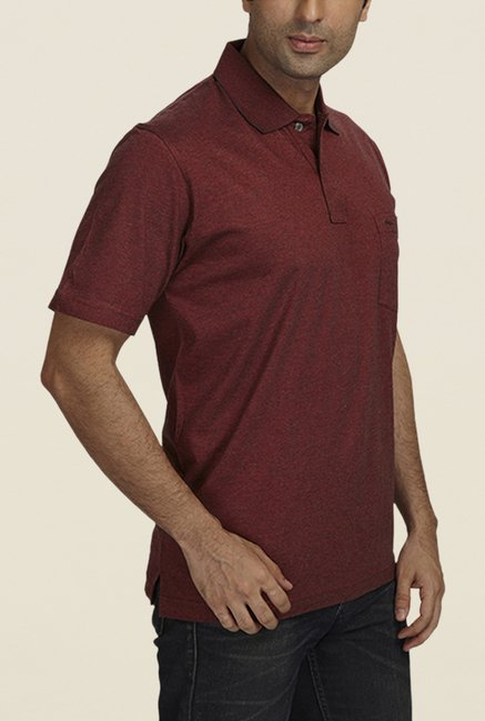 ColorPlus Maroon Solid Polo T Shirt