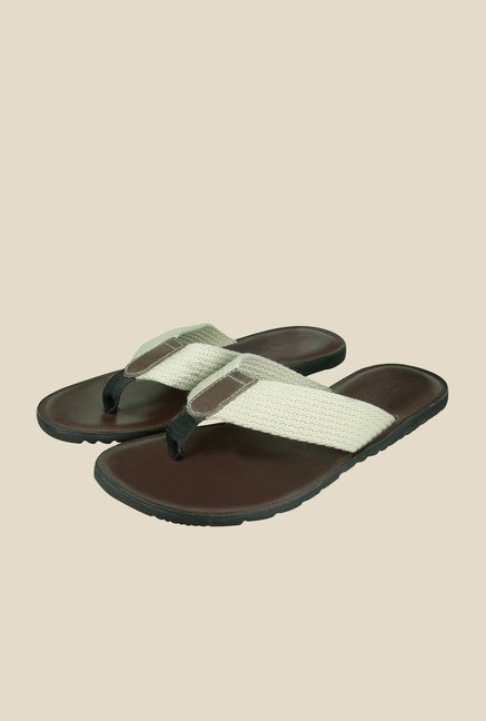 US Polo Assn. Beige & Brown Casual Thongs