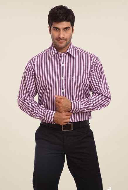ColorPlus Purple Striped Shirt