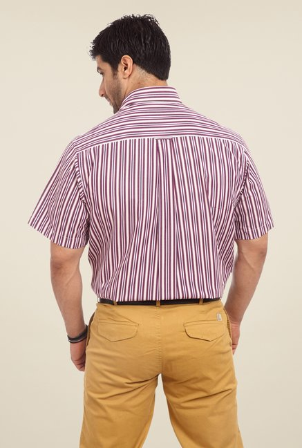 ColorPlus Violet Striped Shirt