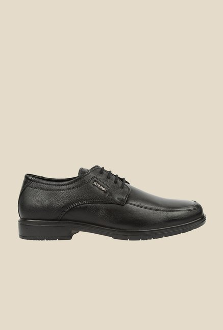 Spunk Swann Black Derby Formal Shoes