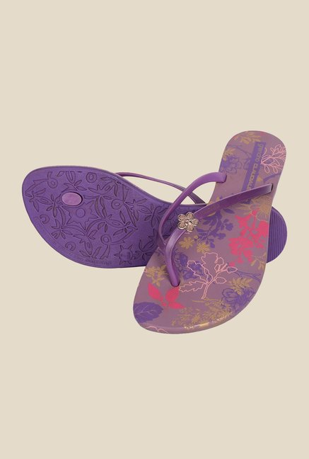 Grendha Violet & Purple Flat Sandals