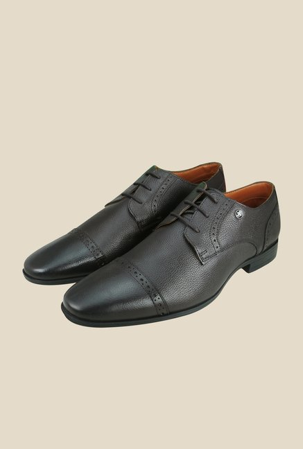 Arrow Brown Leather Derby Shoes