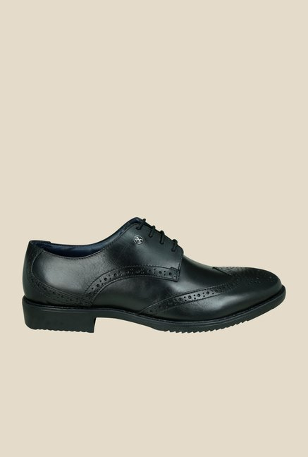 Arrow Black Leather Brogue Shoes